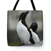 Bonded For Life... Tote Bag by Nina Stavlund