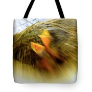 Born To Fly Tote Bag by Robyn King