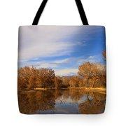 Bosque Del Apache Reflections Tote Bag by Mike  Dawson