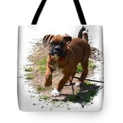 Boxer Puppy 14-1 Tote Bag by Maria Urso
