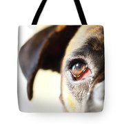 Boxer's Eye Tote Bag by Jana Behr