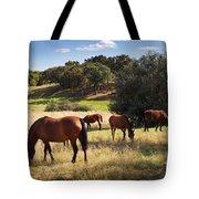 Breed Of Horses Tote Bag by Carlos Caetano