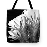 Brilliant Blossoms Diptych Left Tote Bag by Kelley King