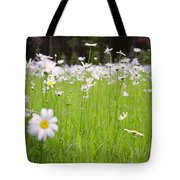 Brilliant Daisies Tote Bag by Aaron Aldrich