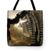 Bronze Abstract Tote Bag by Stuart Litoff
