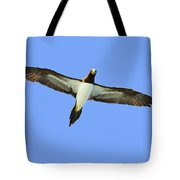Brown Booby Tote Bag by Tony Beck