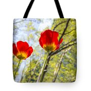 Bryant Park Tulips New York  Tote Bag by Angela A Stanton