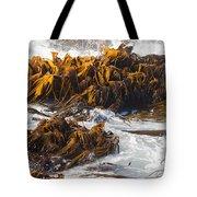 Bull Kelp Durvillaea Antarctica Blades In Surf Tote Bag by Stephan Pietzko