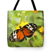 Butterfly Wings Tote Bag by Anne Gilbert