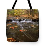 Buttermilk Falls Tote Bag by Dale Kincaid