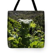 California Coast Hillside Flower 5d22613 Tote Bag by Wingsdomain Art and Photography