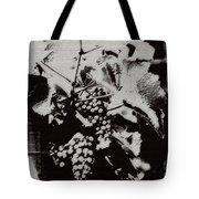 California Vineyard Tote Bag by Linda Knorr Shafer
