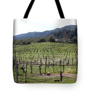 California Vineyards In Late Winter Just Before The Bloom 5d22088 Tote Bag by Wingsdomain Art and Photography