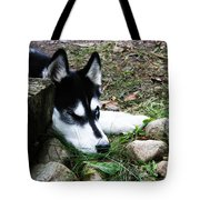 Calm And Comfy Tote Bag by Jamie Lynn