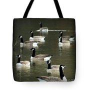 Calm Waters Tote Bag by Karen Wiles