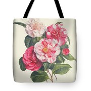 Camelias Tote Bag by Augusta Innes Withers