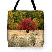 Canadian Autumn Tote Bag by Kathy Bassett