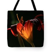 Candle In The Wind Tote Bag by Donna Kennedy