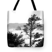 Cannon Beach Tote Bag by David Patterson