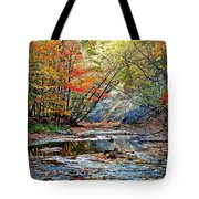 Canopy Of Color Iv Tote Bag by Frozen in Time Fine Art Photography