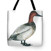 Canvasback Duck  Tote Bag by Anonymous