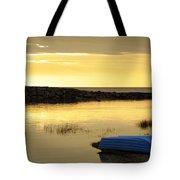 Cape Cod Delight Tote Bag by Luke Moore