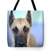Cappy Tote Bag by Lisa Phillips