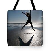 Carpe Diem Tote Bag by Lisa Knechtel