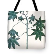 Castor Oil Plant Tote Bag by Indian School