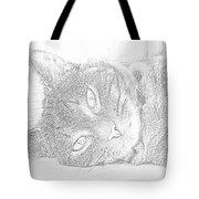 Cat's Eye Tote Bag by J D Owen