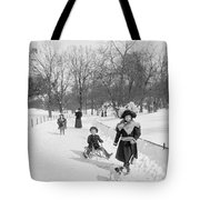 Central Park In New York Tote Bag by Anonymous