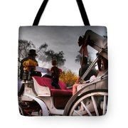 Central Park New York - Romantic Carriage Ride 2 Tote Bag by Miriam Danar