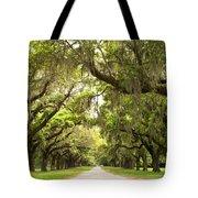Charleston Avenue Of Oaks Tote Bag by Stephanie McDowell