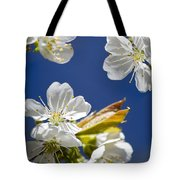 Cherry Blossoms Tote Bag by Christina Rollo