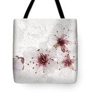 Cherry blossoms close up Tote Bag by Elena Elisseeva