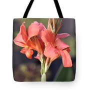 Chicago Botanical Gardens - 79 Tote Bag by Ely Arsha