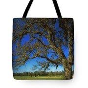 Chickamauga Battlefield Tote Bag by Mountain Dreams