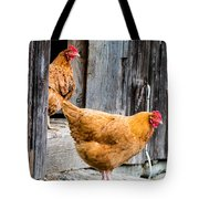 Chickens At The Barn Tote Bag by Edward Fielding