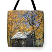Childhood Memories Tire Swing  Tote Bag by Timothy Flanigan