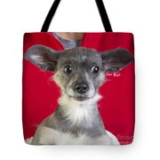 Christmas Dog Tote Bag by Edward Fielding