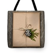 Christmas Present  Tote Bag by Elena Elisseeva