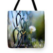 Clash Of The Titans Tote Bag by Laura Fasulo