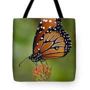 Close-up Pose Tote Bag by Penny Lisowski