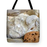 Coastal Shell Fossil Art Prints Rocks Beach Tote Bag by Baslee Troutman