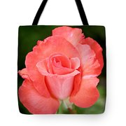 Cobra Rose  Tote Bag by Christine Till