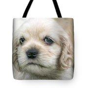 Cocker Pup Portrait Tote Bag by Carol Cavalaris