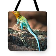 Collared Lizard Tote Bag by Inge Johnsson