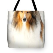 Collie Tote Bag by Diana Angstadt