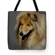 Collie dog Tote Bag by Linsey Williams