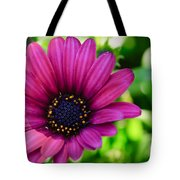 Color Madness Tote Bag by Charles Dobbs